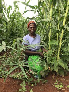 Kamweko Bean Project Shmeda XS