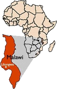Malawi Africa Africa Bags - Malawi map png